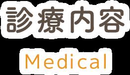 診療内容 medical